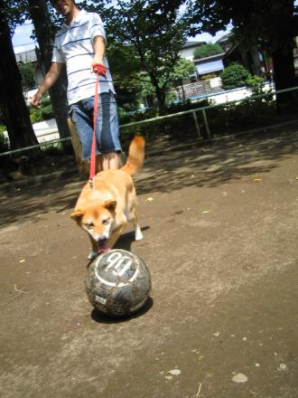 he-loves-ball9.jpg