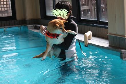 mame-swims.jpg