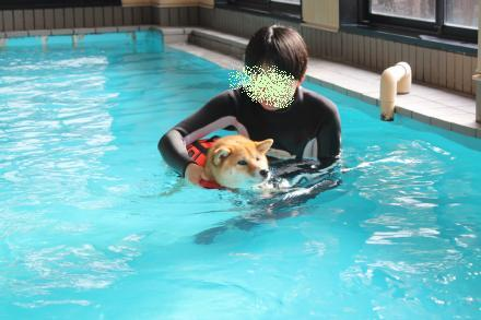 mame-swims2.jpg