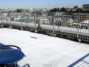 2008-02-03 雪
