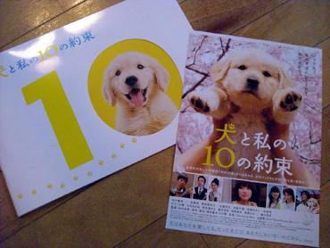 2008-02-15 犬と私の10の約束1