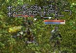 20050623-12.jpg