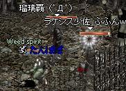 20050630-24.jpg
