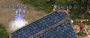 20050704-7.jpg