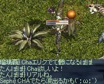 20050709-22.jpg
