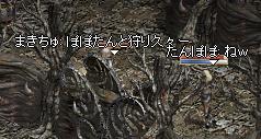 20050715-10.jpg