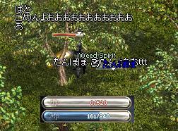 20051015-5.jpg