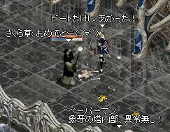 20061111.12.jpg
