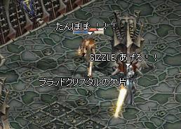 20061231.7.jpg