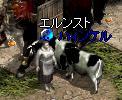 20070904-11.jpg