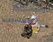 20070907-25.jpg