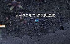20070924-9.jpg
