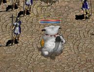20080110-1.jpg
