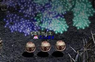 LinC0666.jpg