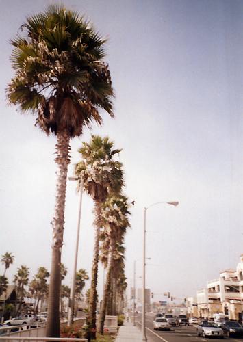 0302-2.jpg