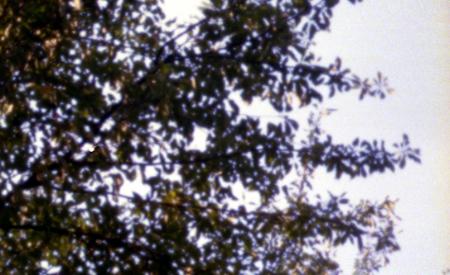 20050218205636.jpg