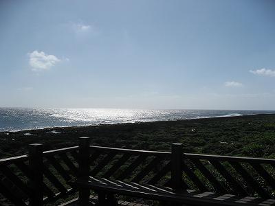 2008_1017-3.jpg