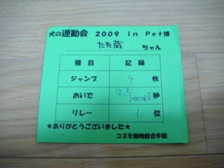 DSC06324.jpg