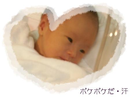 miwa614 029