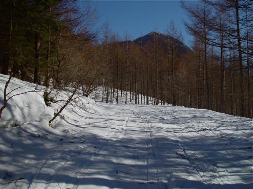 20080120-4.jpg
