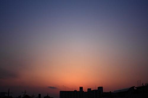 20080408-4.jpg