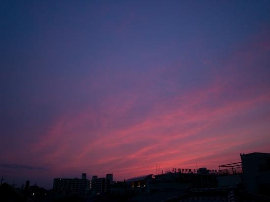 20080725-b.jpg