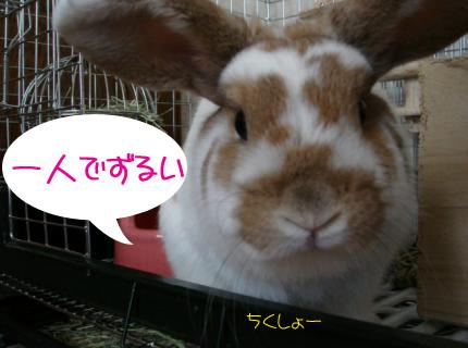 怒ってる?