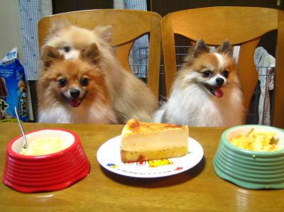 あたち達のケーキもあるよ。