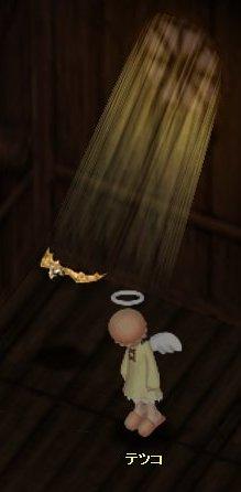 天使が舞い降りた。゜゜(ノω<)゜ ゜。