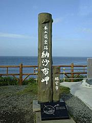 ewsn_japan01.jpg