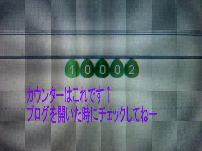 DSC034451.jpg