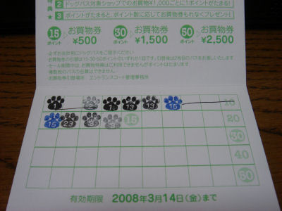 DSC06880.jpg