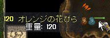 WS000128.JPG