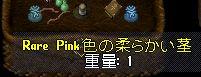 WS000232.JPG