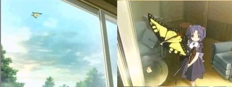 第13話の蝶々。