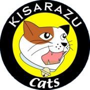 KISARAZU Cats