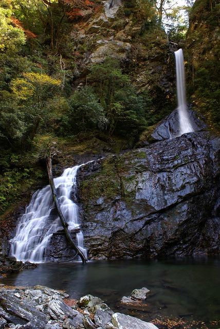 飛竜の滝②(20081115)