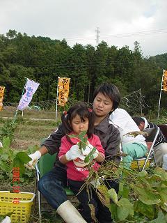 娘と豆狩り①