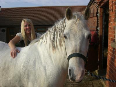 サリーの馬
