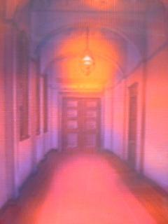 何か出そうな廊下・・・