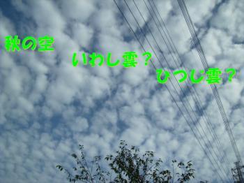 PA110076秋の空