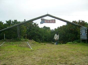 PB150252松本農園