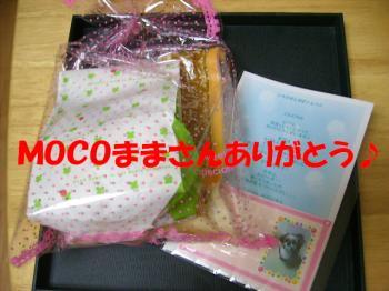 PC030082.jpg