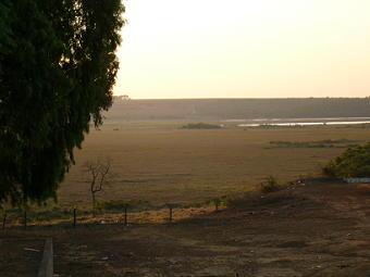 広い広いブラジルの大地