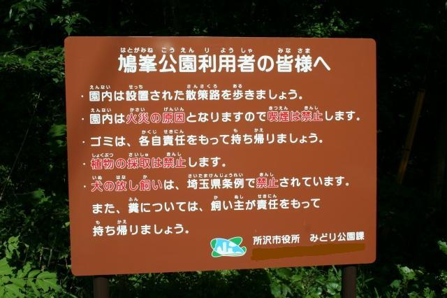 鳩峰公園(看板)