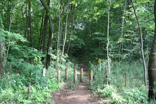 鳩峰公園入り口