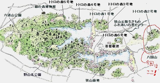 狭山丘陵・地図