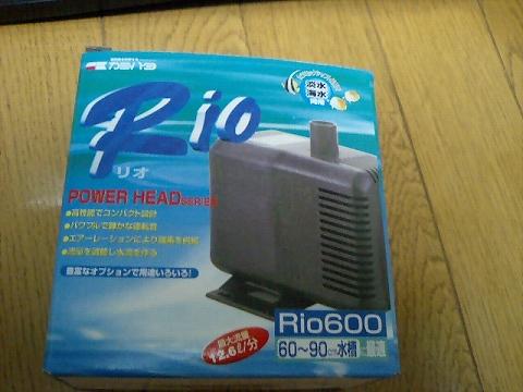 Rio600080607
