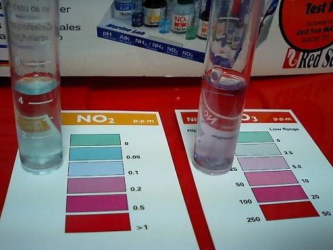 水質検査080820_03