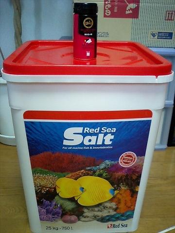 塩とエサ~080531